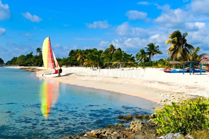 海岸古巴 免版税库存照片