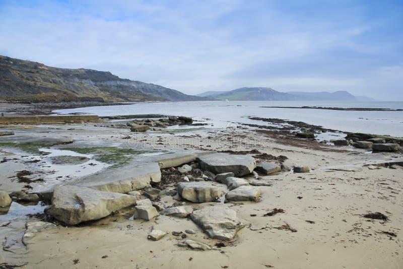 海岸多西特侏罗纪lyme regis英国 库存照片