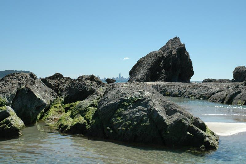 海岸大象金岩石 免版税库存照片