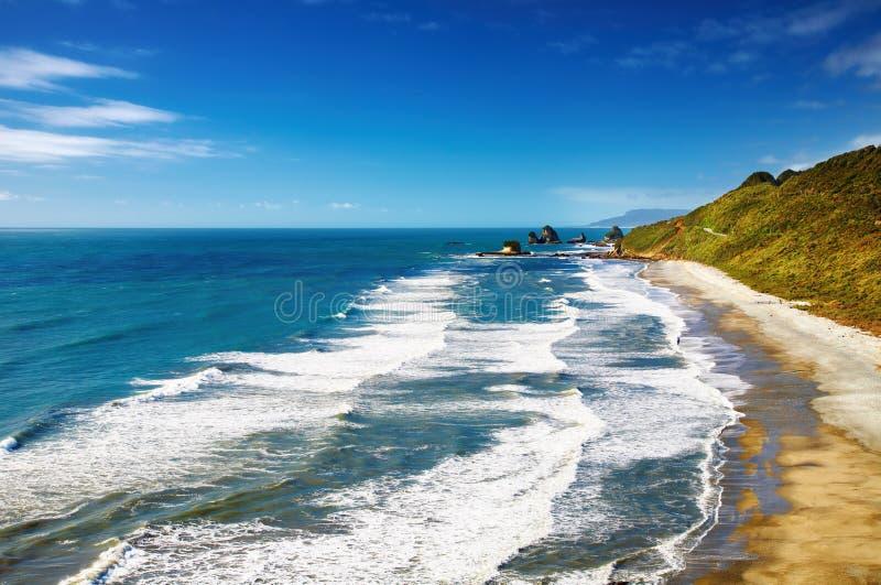 海岸新的西方西兰 库存图片