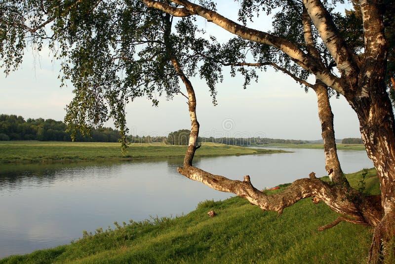 海岸早晨伏尔加河 免版税库存图片