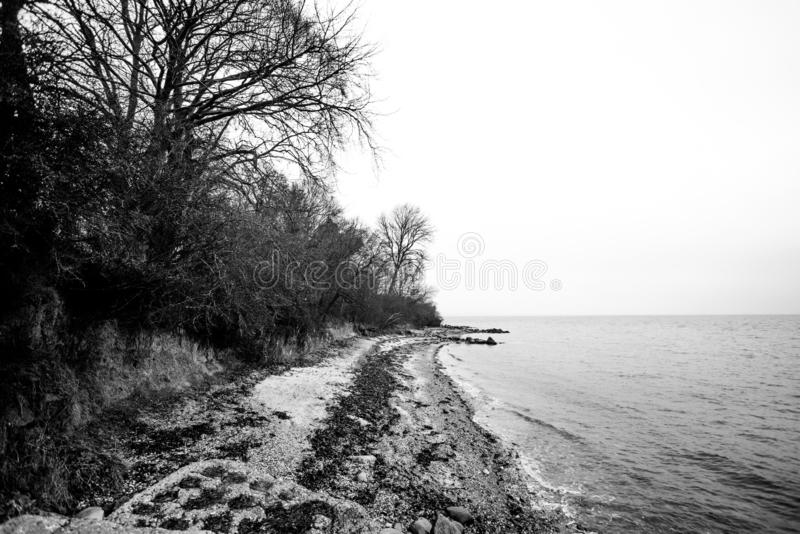 海岸的黑白照片在秋天的 免版税库存照片