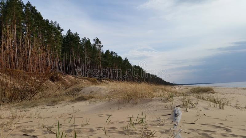 海岸线小卵石海水 库存照片
