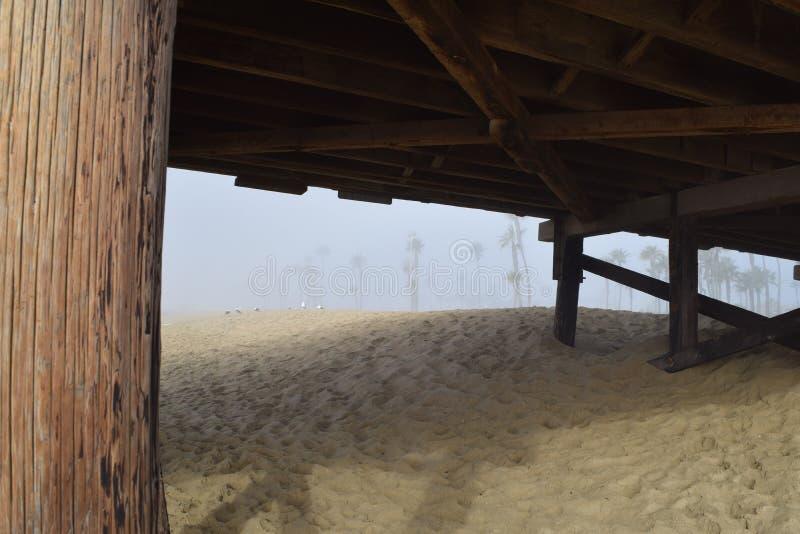 海岸线棕榈树被构筑在雾的码头下 库存照片