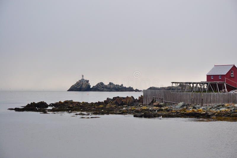 海岸线纽芬兰 图库摄影