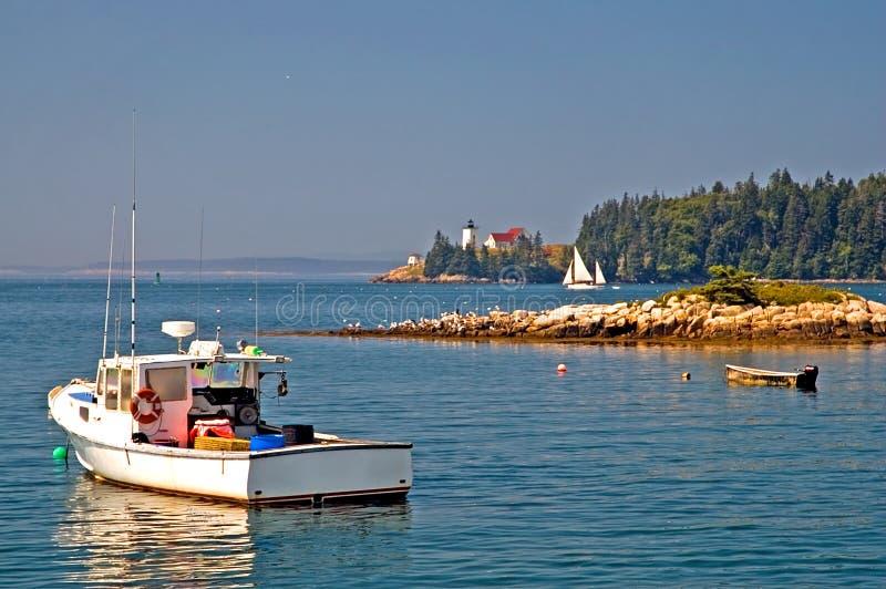 海岸线风景的缅因 免版税库存照片