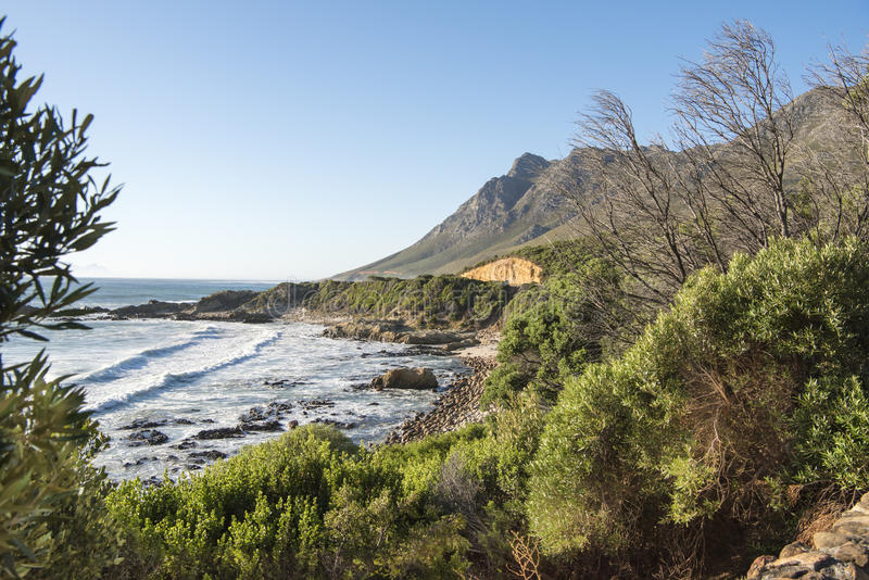 海岸线,西开普省,南非 免版税库存照片