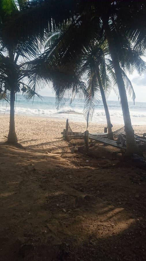 海岸角热带海滩视图 图库摄影