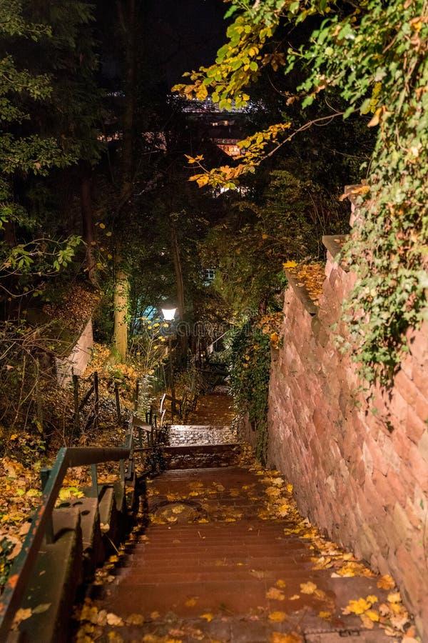 海得尔堡老镇的夜视图有狭窄的街道的 免版税库存图片