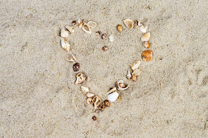 从海扇壳的心脏 免版税库存照片