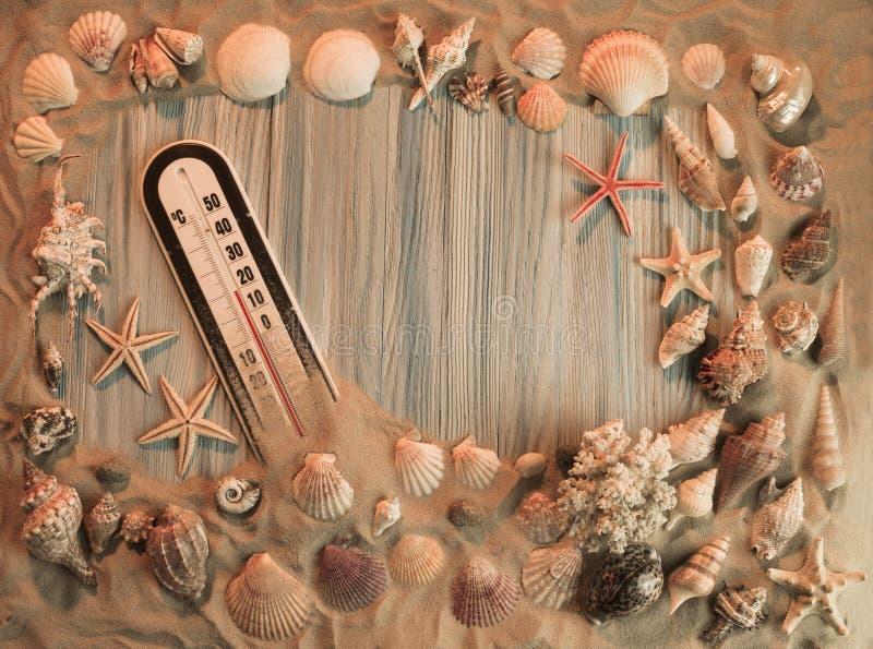 从海扇壳的框架 图库摄影