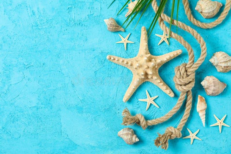 海星、贝壳、海绳索和棕榈叶在两口气背景,空间文本的和顶视图 ?? 免版税库存照片