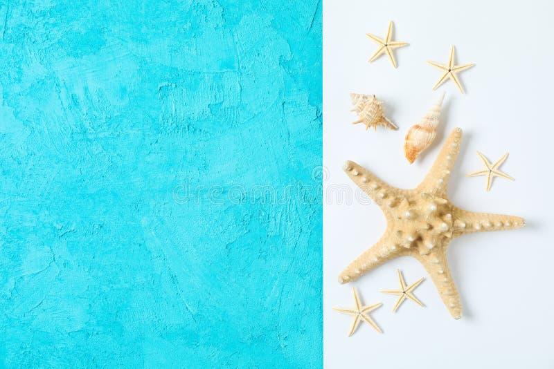 海星和贝壳在两口气背景、空间文本的和顶视图 ?? 图库摄影