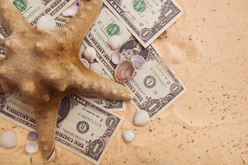 海星和贝壳在美元钞票 库存图片