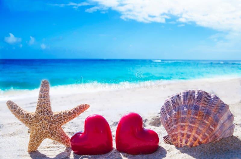 海星和贝壳与心脏由海洋 库存图片