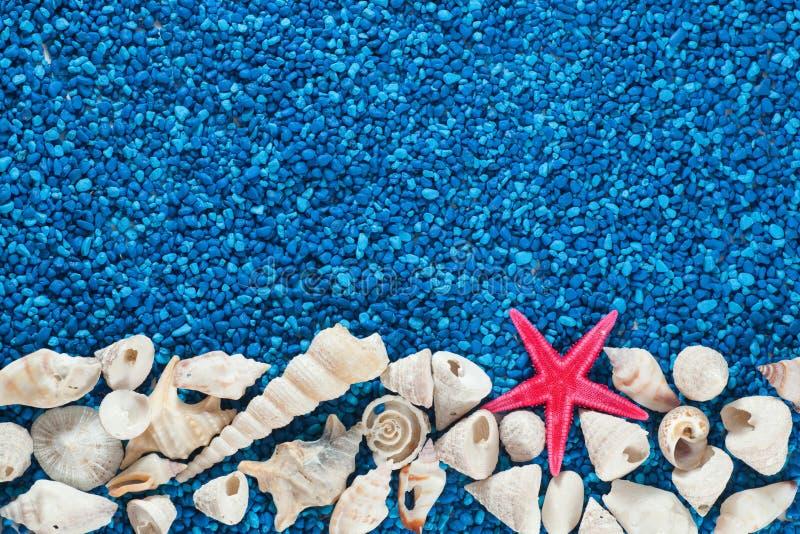 海星和贝壳在沙子 库存照片