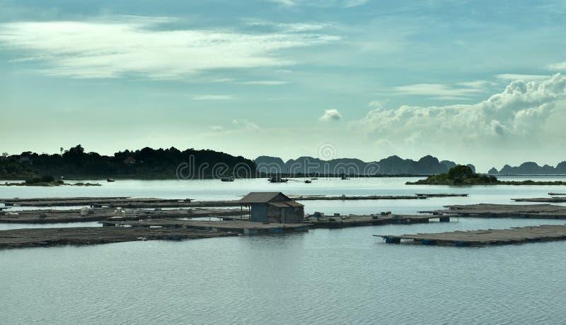 海景在下龙湾,越南 库存照片