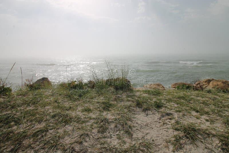 海景,狂放的海滩,海浪 库存图片