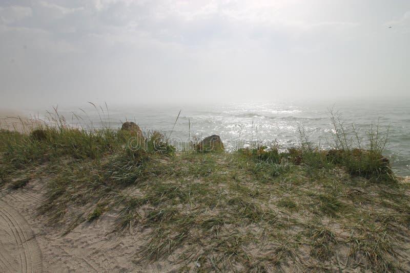 海景,狂放的海滩,海浪 免版税图库摄影