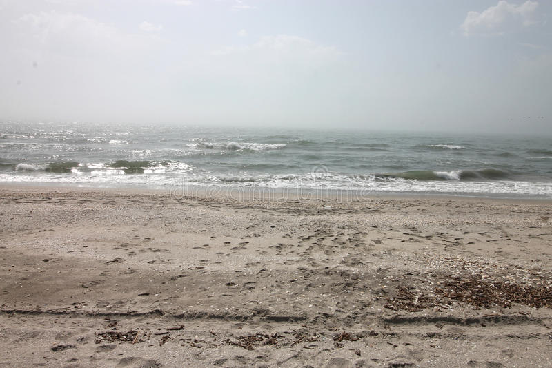 海景,狂放的海滩,海浪 免版税库存照片