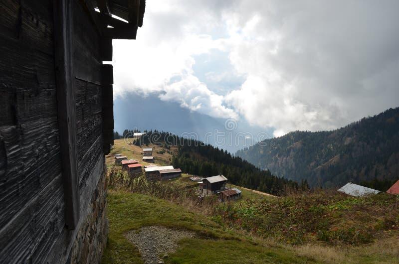 黑海村庄在森林里 免版税图库摄影