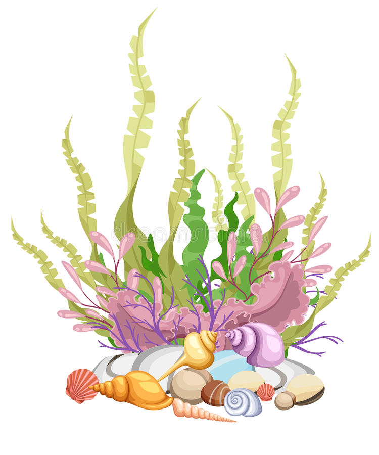 海植物和水生海洋海藻海草集合例证 黄色和棕色,红色和绿色水族馆 皇族释放例证