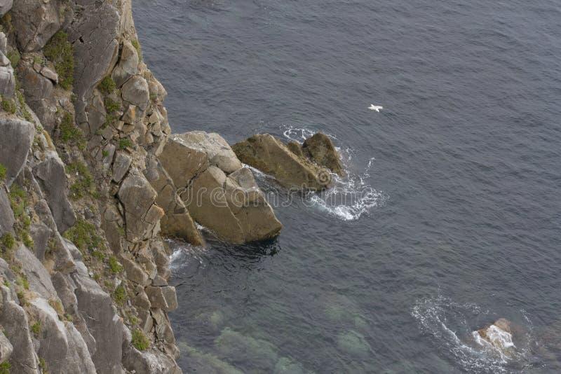 海沐浴的峭壁 图库摄影