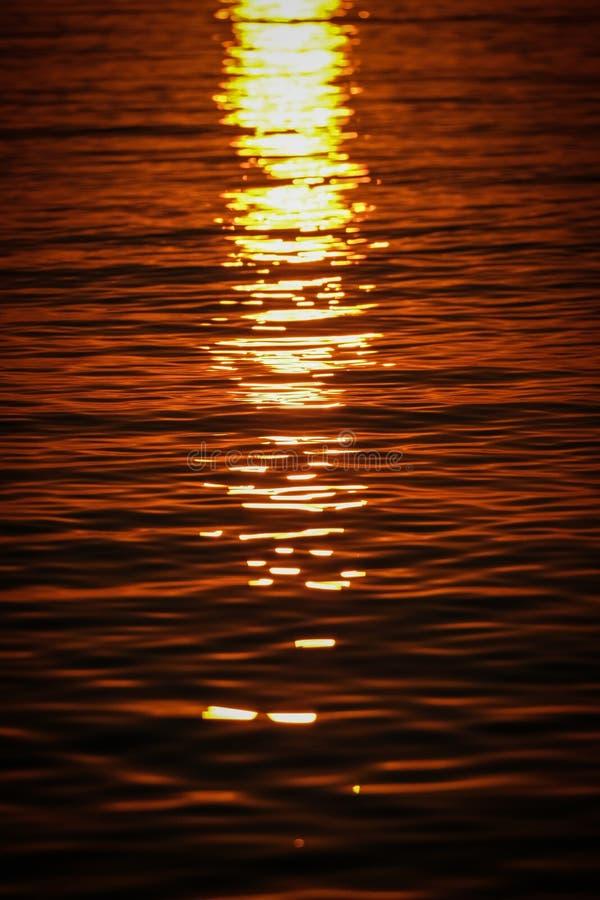 海波浪垂直的射击反射阳光的在日落 库存照片