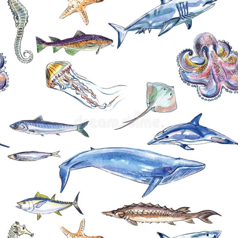 海洋动物的无缝的样式 皇族释放例证