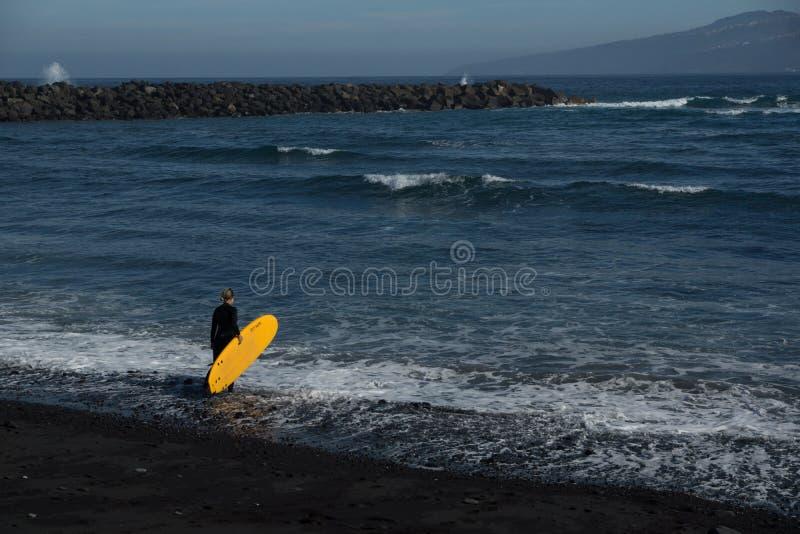 海洋告诉冲浪者 库存照片