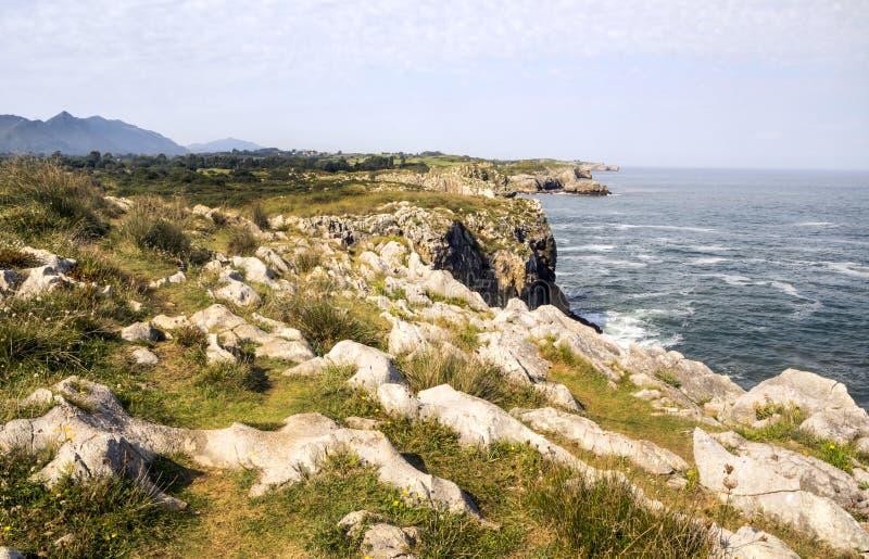 海洋大西洋海岸线 免版税库存图片