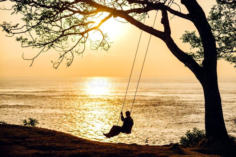 海洋摇摆树休息日落巴厘岛 库存图片