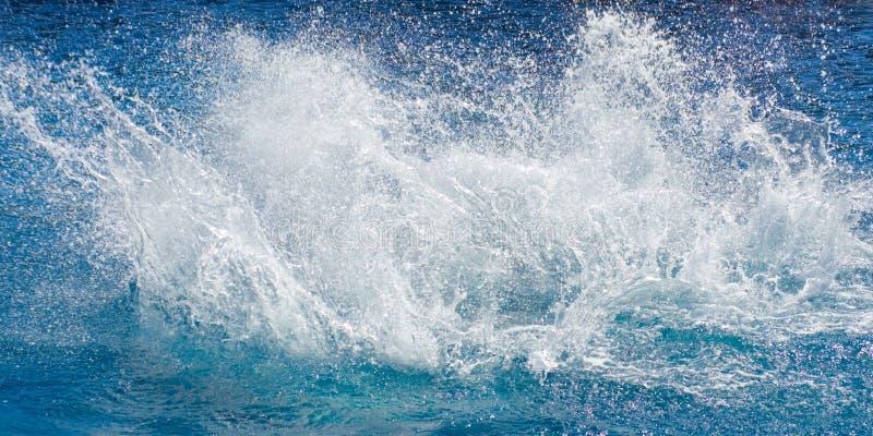海洋海运spalsh 免版税库存照片
