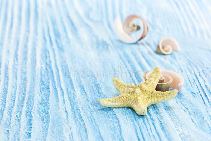 海洋生物装饰 有海星和spir的蓝色木板 库存照片