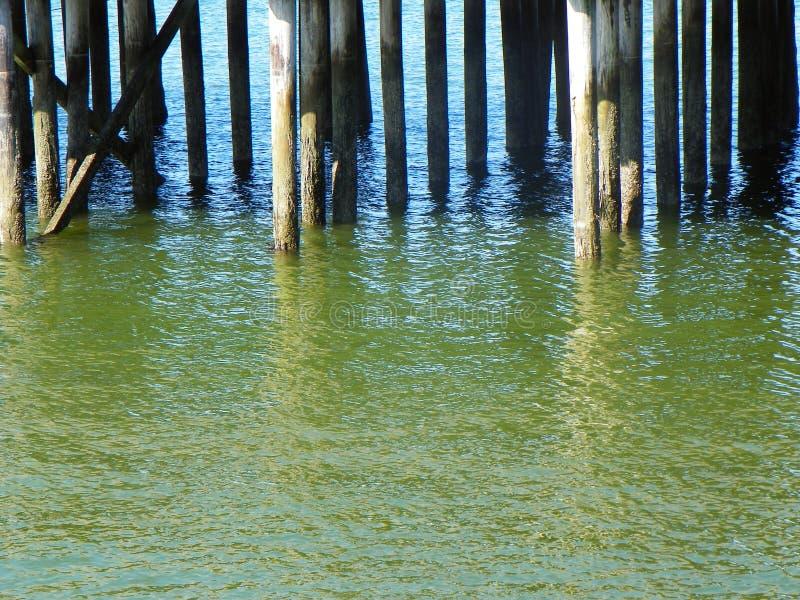海洋码头绿色海水围拢的日志打桩 库存图片