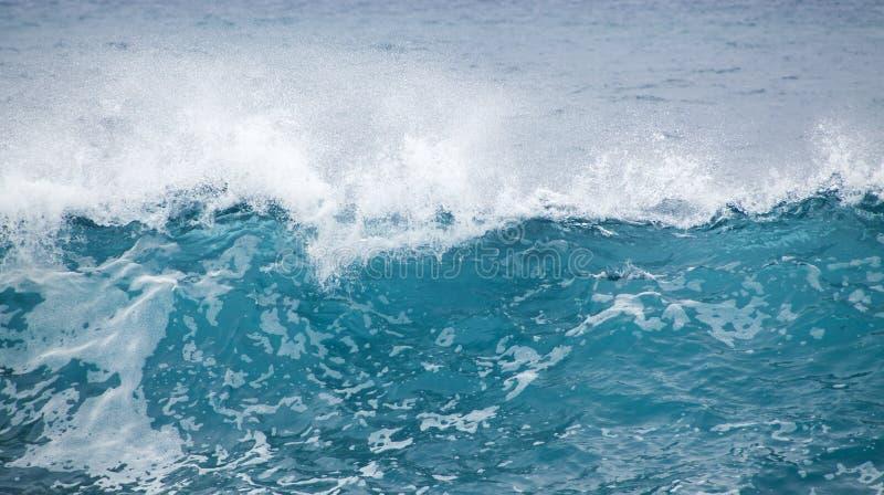 海浪打破 免版税库存图片