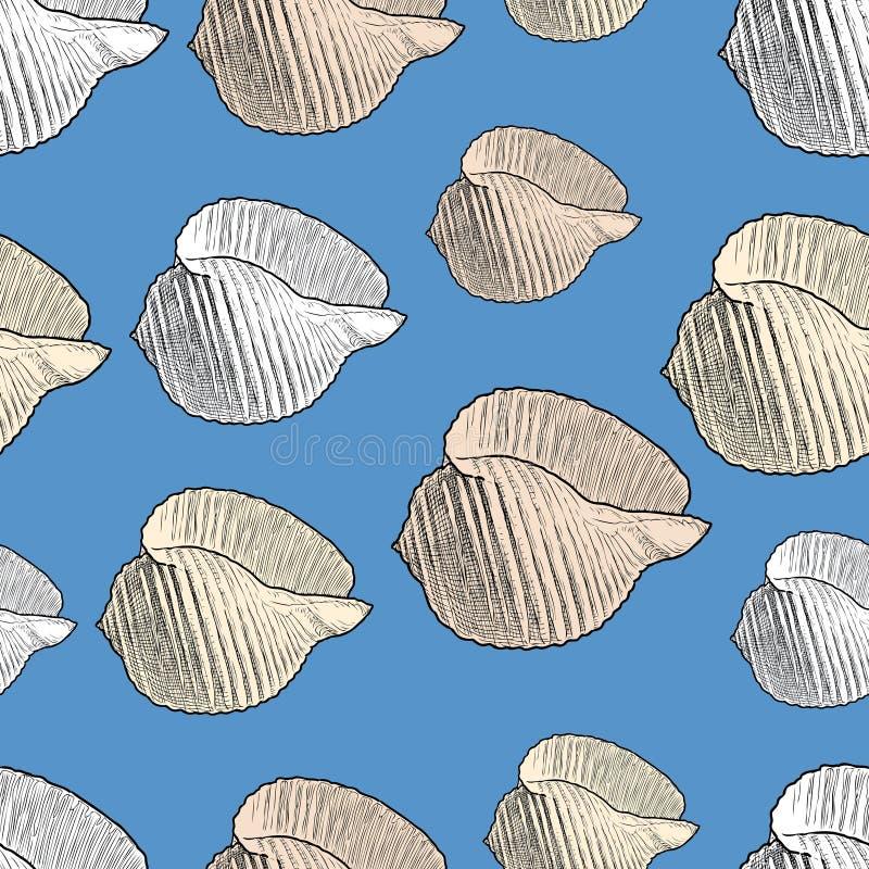海海扇壳的样式 库存例证