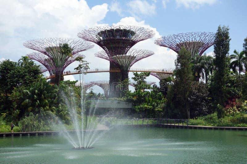 滨海湾公园,新加坡,新加坡 免版税图库摄影