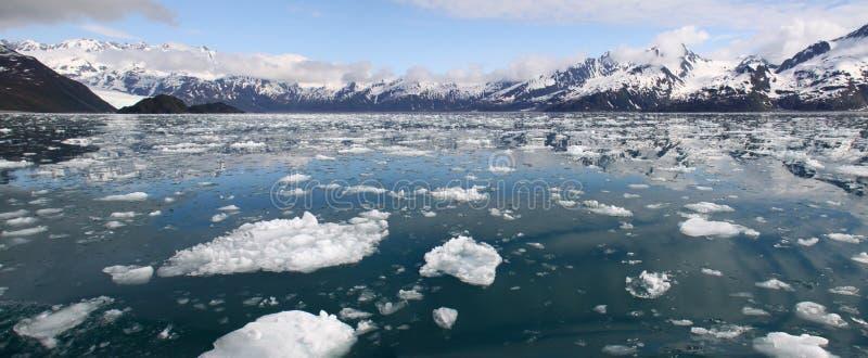 海湾冰山全景kenai的山 免版税图库摄影