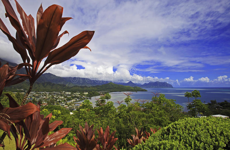 海湾夏威夷kaneohe奥阿胡岛 库存图片