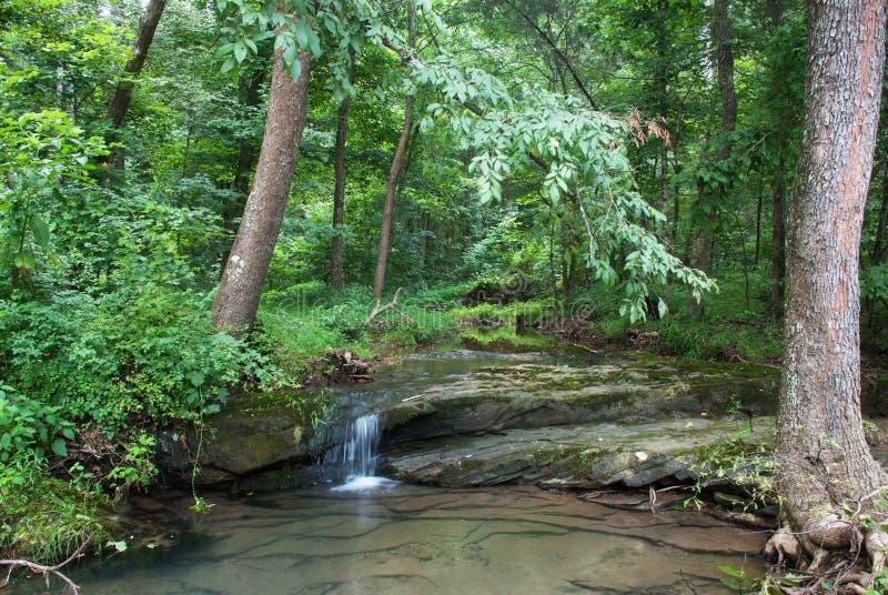 海湾小河,肖尼国家森林,伊利诺伊,美国 图库摄影