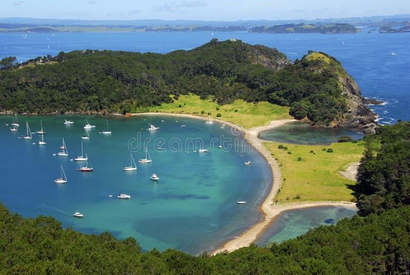 海湾海岛海岛新的roberton西兰 免版税库存图片