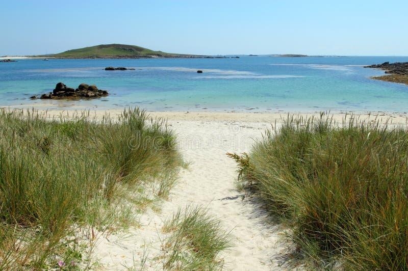 海湾海滩充满灯心草bryher的小岛scilly 免版税库存图片