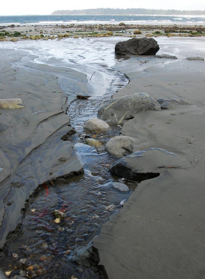 海湾海滩florencia视图 图库摄影
