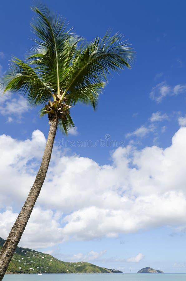 海湾海滩magens 免版税库存照片