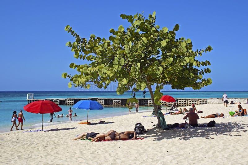 海湾海滩洞牙买加蒙特奇s医生 免版税库存照片