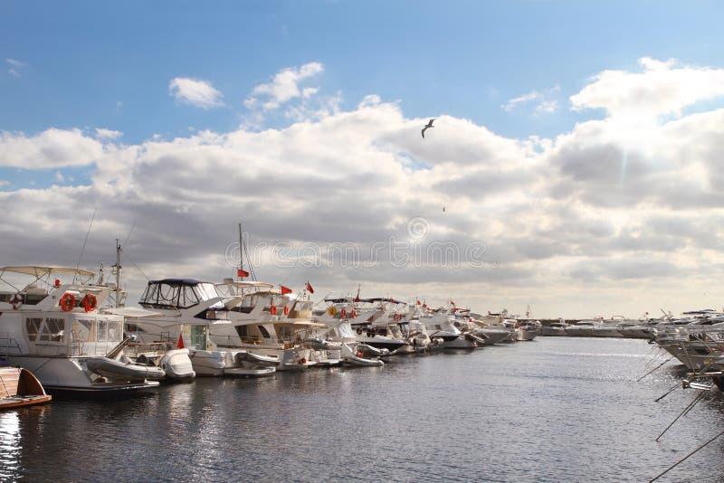 海湾豪华停放的海运游艇 免版税库存照片