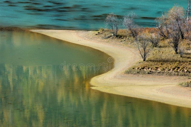 海湾蹲下的龙kanas 图库摄影