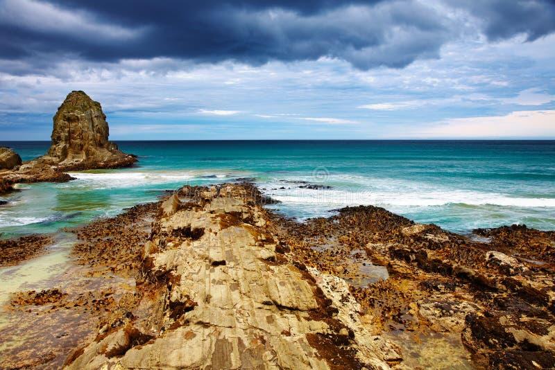 海湾食人者新西兰 免版税库存图片