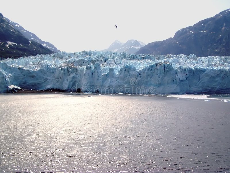 海湾galcier冰川margerie 免版税库存照片